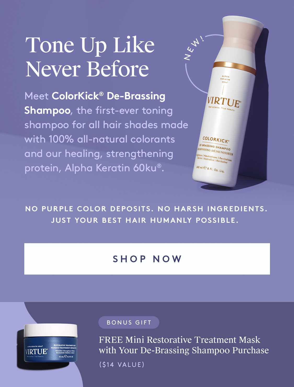 ColorKick De-Brassing Shampoo