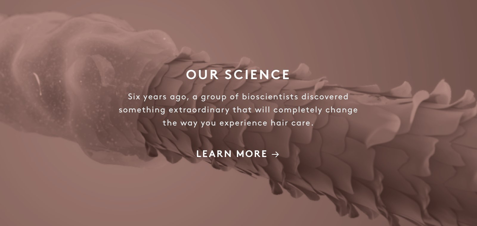 Our Science