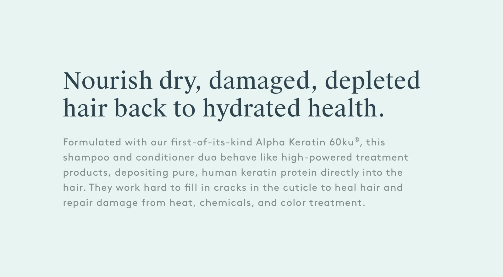 Nourish dry, damage, depleted hair back to hydrated health.