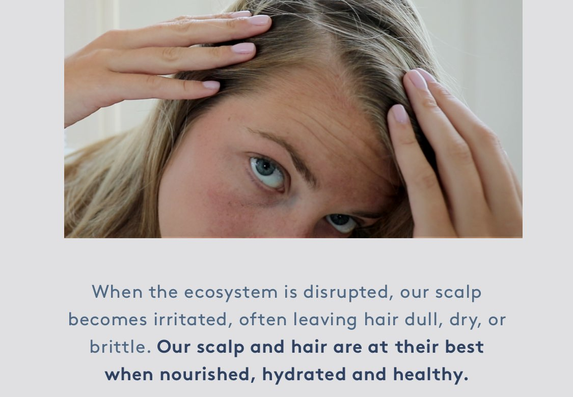 When the ecosystem is disrupted, our scalp becomes irritated, often leaving hair dull, dry, or brittle.